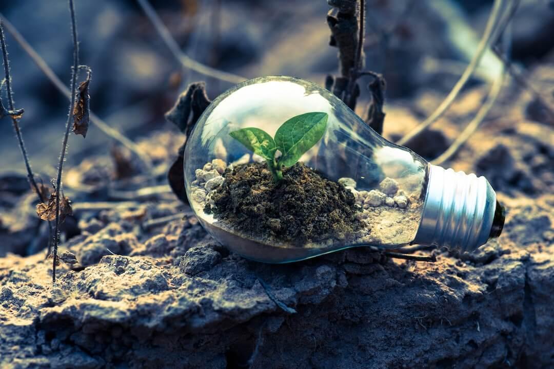 green marketing - corso - Piacenza - Nextrategy